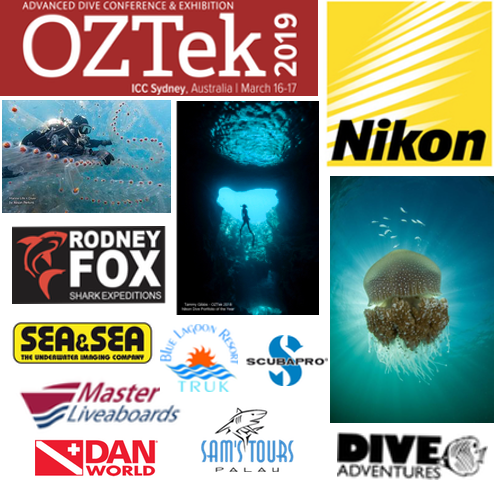 Register for the 2019OZTek Underwater Photographic competition